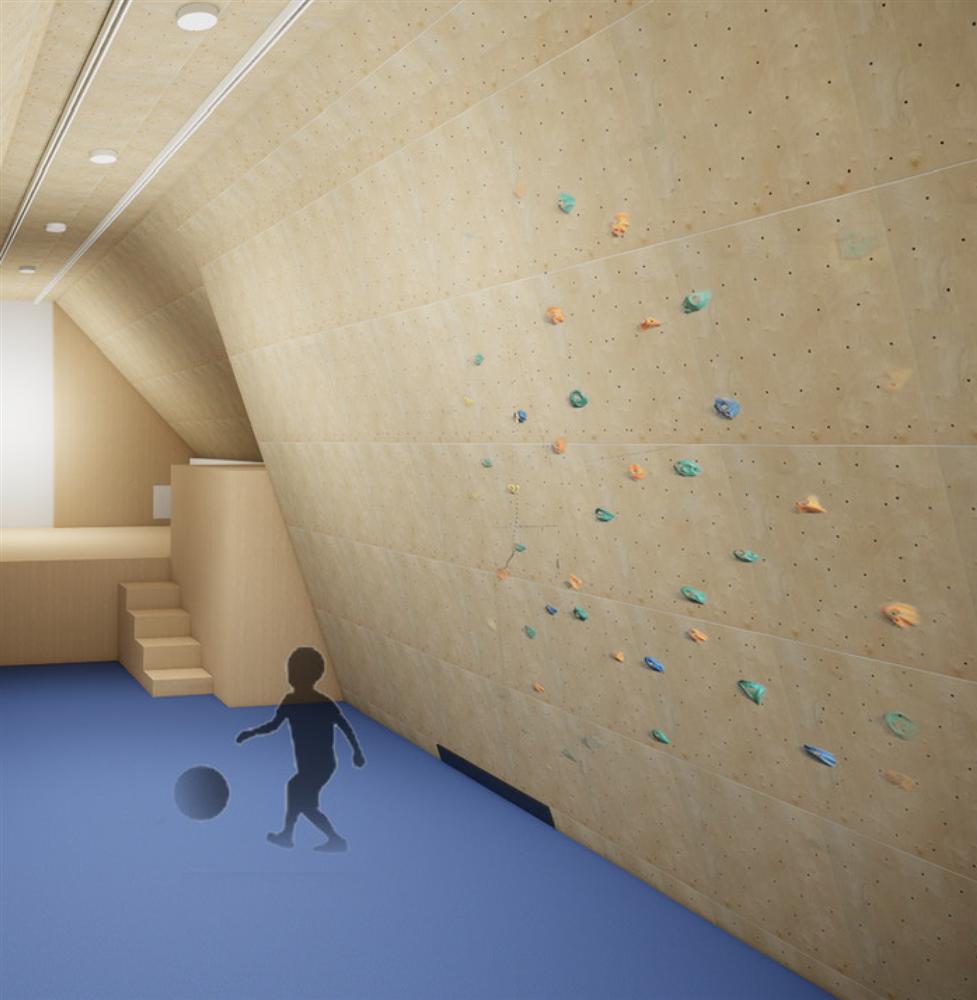 Build A Climbing Wall Book Atomik Climbing Holds Rock Climbing Holds Climbing Wall Holds